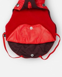 Impermeable para perro Willie rojo